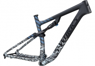 S-Works Epic EVO Frameset - photo 1