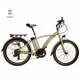 2018 Juicy Electric Bikes Sport Lite 26